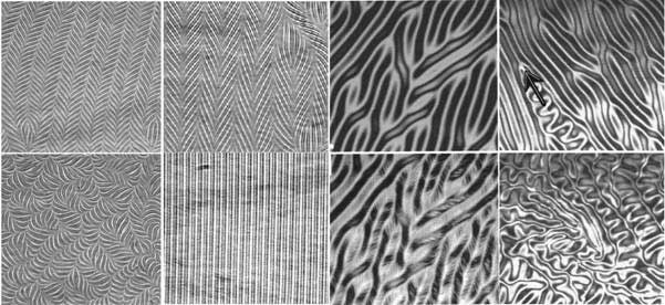 Description: liquid crystal patterns