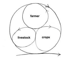 Figure     9. The minimum integrated sustainable farm