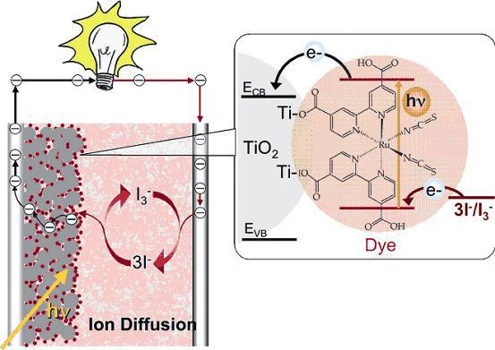 A dye-sensitized solar cell